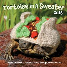 tortoise in a sweater 2018 16 month calendar september 2017