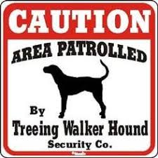 bluetick coonhound decals coon hunting logos bing images coon hunting pinterest