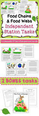 25 best food chain worksheet ideas on pinterest food chains