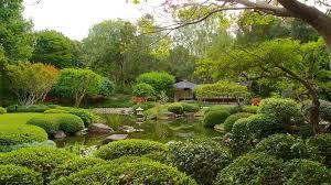 Botanic Gardens Brisbane City Pretty Botanic Gardens Brisbane City Gallery Garden And