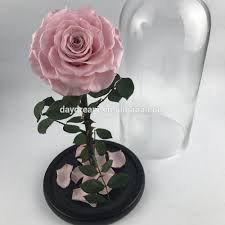 wholesale pink preserved rose in glass dome romatic gift forever