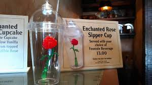 Enchanted Rose That Lasts A Year Beauty And The Beast Themed Enchanted Rose Souvenir Cup Now