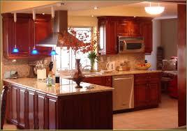 Kitchen Furniture Miami Modern Kitchen Cabinets Miami Home Design Ideas Fl Idolza