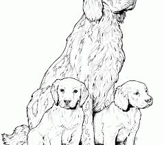 coloring pages dogs coloring pages adresebitkisel