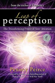 leap of perception the transforming power of your attention