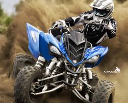 81 best yamaha raptor journey u0027s images on pinterest raptors