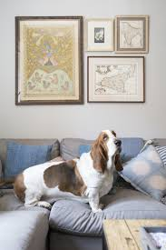 home makeover tour an apartment inspired by a dog