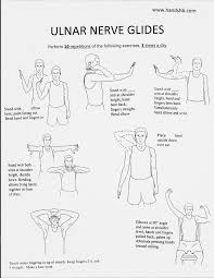Anatomy And Physiology Exercise 10 Best 10 Hand Therapy Ideas On Pinterest Physical Therapy Hand