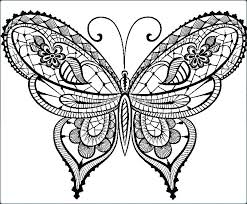 detailed butterfly coloring pages for adults butterfly coloring pages online printable coloring cute butterfly
