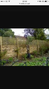 10 best garden wall images on pinterest garden ideas garden