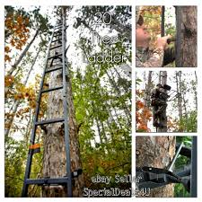 deer ladder tree stand 20ft sniper rifle bow treestand