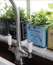 plante cuisine decoration décoration cuisine plantes aromatiques