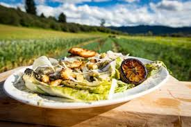 napa salad recipe grilled napa cabbage caesar salad with modern farmer