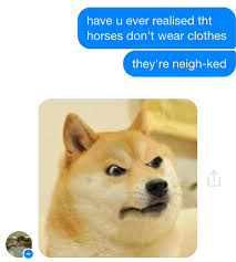 Doge Meme Tumblr - random text dump album on imgur