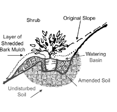 image result for how to plant shrubs on a slope landscape ideas
