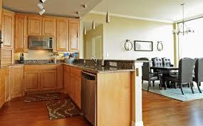 Apartment Kitchen Designs by Classy 20 Light Hardwood Apartment 2017 Design Decoration Of