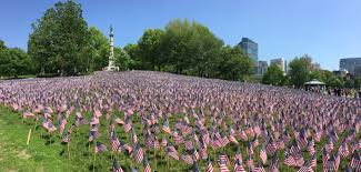 Memorial Garden Flags Free Images Field Flower Usa American Flag Botany
