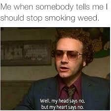 Funny Stoner Memes - instagram photo by weed humor jan 13 2016 at 4 29am utc dope