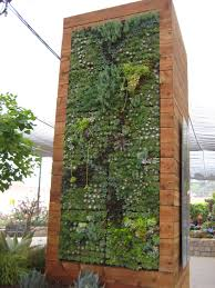 astonishing wall garden design with green plants and flower