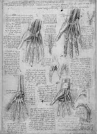 Leonardo Da Vinci Human Anatomy Drawings Drawing Art Beautiful Vintage Artwork Antique History Skeleton