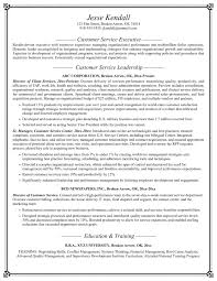 Resume Examples Online Beautiful Design Ideas Certified Professional Resume Writer 11