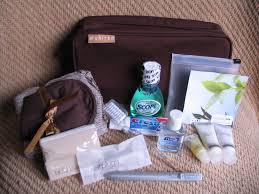 United Airlines Carry On Amenity Kit Review United Airlines First Class Fall 2010