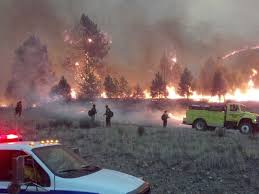 Wildfire Case Drop Rate by Sun Valley Ketchum Idaho Wildfire Business Insider