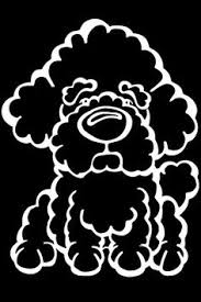 bichon frise cartoon sohogarth originating from the med the bichon frise is my dog