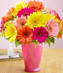gerbera daisies feature flower for a cheerful arrangement and