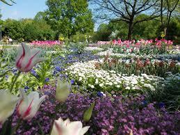 Blumen Bade Kur Bayern Unterkünfte Wissenswertes