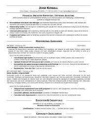 Director Of Finance Resume Examples by Free Audit Manager Resume Example