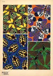 Photo Art Deco Art Deco Patterns Of Beetles And Butterflies