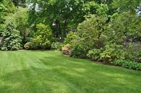 18 latest backyard landscaping designs ideas design trends