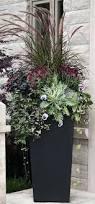 Garden Containers Ideas - garden pots and planters ideas outdoor pots and planters melbourne