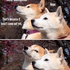 Meme Shiba Inu - shiba inu dogs discuss the new constipation movie