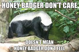 Honey Badger Memes - honey badger don t care doesn t mean honey badger don t feel