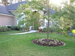 texas landscaping ideas front yard landscaping ideas texas the garden inspirations
