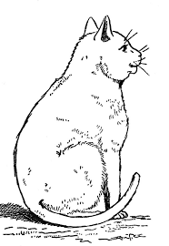 242 coloring pages cats cats cats images