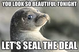 Baby Seal Meme - funny seal meme un furry friends pinterest meme