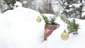Christmas Tree Stop - christmas gifts parking in snow under pine tree stop motion