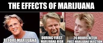 Injecting Marijuanas Meme - the effects of marijuana abuse album on imgur