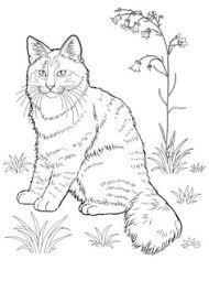 cat coloring pages printable mother cat kittens coloring