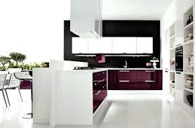 kitchen cabinet interior purple kitchen cupboard doors purple kitchen cabinets interior