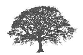 tree cliparts co
