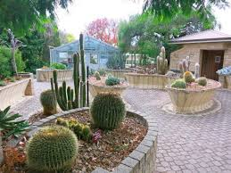 Botanic Gardens Hobart Royal Tasmanian Botanical Gardens Cactus Collection Picture Of