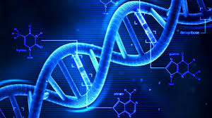golden ratio dna spiral golden ratio and islam the miracle of mecca islam hashtag