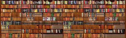 wallpaper that looks like bookshelves bookshelf wallpaper bdfjade