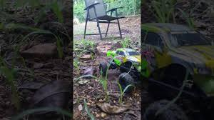 hsp 1 24 mini crawler backyard adventure youtube