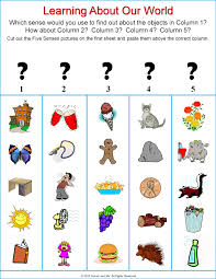 five senses lessons tes teach