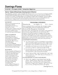 business development manager resumes sales director resume business executive resume sample vice